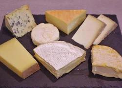 まちなかWORK SHOP 第5回 自分のチーズの好みを見つけよう!